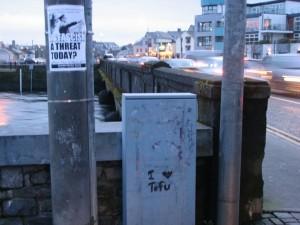 Stan Carey - Fascism & tofu at Wolfe Tone Bridge, Galway