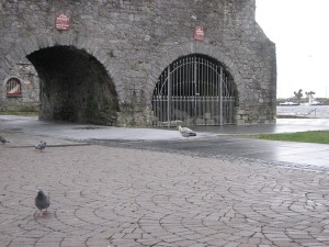 Stan Carey - heron at Spanish Arch, Galway