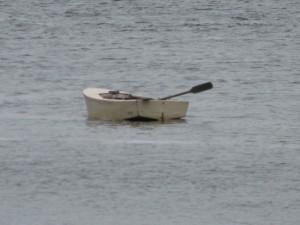 Stan Carey - swanlike boat in Galway
