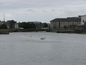 Stan Carey - swanlike boat & surroundings, Galway
