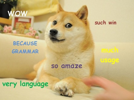 stan carey - doge meme - wow, such win, because grammar, so amaze, much usage, very language