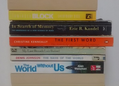stan carey book spine poem - bookmash - the name of the world