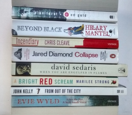 stan carey book spine poem - after the fire