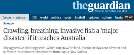 guardian headline full - fears crawling, invasive fish