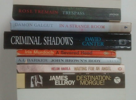 stan carey book spine poem - trespass in a strange room