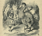 john tenniel engraving of dodo, alice's adventures in wonderland by lewis carroll