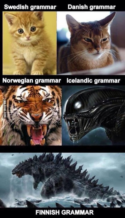 Scandinavian grammar - Swedish Danish Norwegian Icelandic Finnish kitten cat tiger alien godzilla