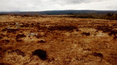 stan carey - prehistoric stone circle near woodford co. galway ireland