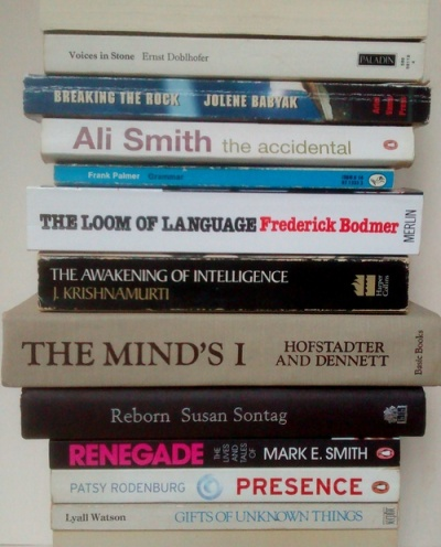 stan carey book spine poem - the accidental grammar