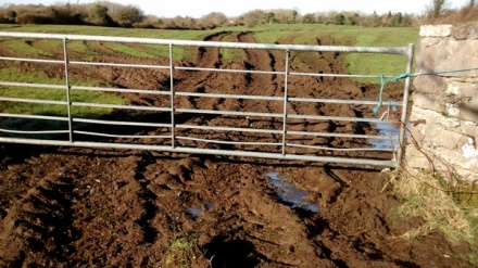 Photo of the entrance to a field in the Irish countryside. A wide grey gate, with blue twine tied to it, hangs over very mucky ground, with tractors wheel tracks leading into the field. A low row of trees can be seen at the far end of the field.