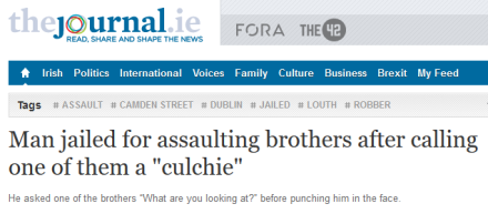 "Headline from TheJournal.ie: ""Man jailed for assaulting brothers after calling one of them a 'culchie'"". Subheading: ""He asked one of the brothers 'What are you looking at?' before punching him in the face"""