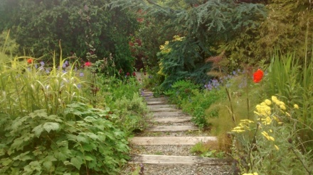A lush garden with a path running down the middle of it. The path has wooden slats as steps, and gravel in between them. It recedes into the distance as it gradually descends. On either side are various plants in full summer growth along with red, blue, and yellow flowers. Trees and large shrubs fill up the background.