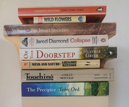 A stack of books before a white background, with the spines of the books facing out and forming a colourful visual poem.